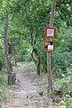 Mindszent, 6630 Hungary - panoramio.jpg