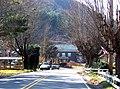 Minneapolis Township, Avery County, North Carolina - panoramio.jpg