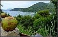 Mirante do Saco da Ribeira - panoramio.jpg