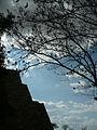 Monte Alban 4.jpg