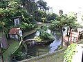 Monte Palace Tropical Garden DSCF0134 (4643100184).jpg