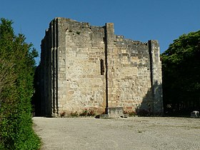Image illustrative de l'article Donjon de Montignac-Charente