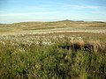 Moorland above Afon Alwen - geograph.org.uk - 836817.jpg