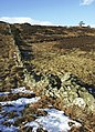 Moorland above Braincroft, near Comrie, Perthshire - geograph.org.uk - 144924.jpg