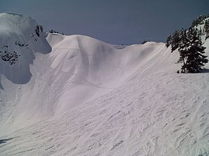 Metastability - Small avalanches demonstrate metastability at Mount Baker Ski Area.