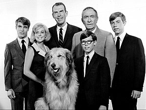 Tina Cole - Cast of My Three Sons (1967). Back row, L-R: Don Grady, Tina Cole, Fred MacMurray, William Demerest, Stanley Livingston. Front: Tramp and Barry Livingston
