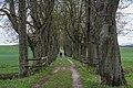 NDOÖ 058 Kastanienallee Bad Wimsbach Neydharting Graben April 15.jpg