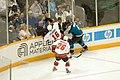 NHL (257687227).jpg