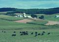 NRCSMD81005 - Maryland (4511)(NRCS Photo Gallery).tif