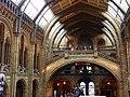 Natural History Museum 206 (8043306442).jpg