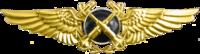 Observador de la aviación naval (táctica) Insignia.png