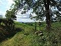 Near Bon yr On. - geograph.org.uk - 559287.jpg