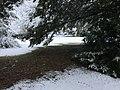 Neige à Saint-Maurice-de-Beynost (Ain, France) - décembre 2017 - 11.JPG