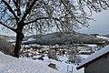Neige 29 janvier 19 (17) (46956019632).jpg