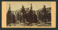 Nevada Falls, from Snow's Hotel, from Robert N. Dennis collection of stereoscopic views.png