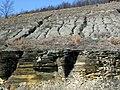 New Providence Shale over New Albany Shale (Mississippian over Devonian; MacDonald Knob Outcrop, Bullitt County, Kentucky, USA) 1 (45178087004).jpg