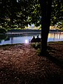 Night at the park in Moscow.jpg