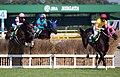 Niigata Jump Stakes10.jpg