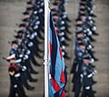 No1 Squadron RAF Regiment on Parade MOD 45155859.jpg