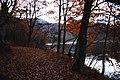 Nogiwa Shinden, Shimogo, Minamiaizu District, Fukushima Prefecture 969-5341, Japan - panoramio (11).jpg