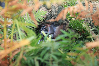 EU Battlegroup - Nordic Battlegroup sniper training at Kilworth, Ireland