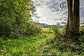 Nordkirchen, Naturschutzgebiet Ichterloh -- 2018 -- 2332-6.jpg