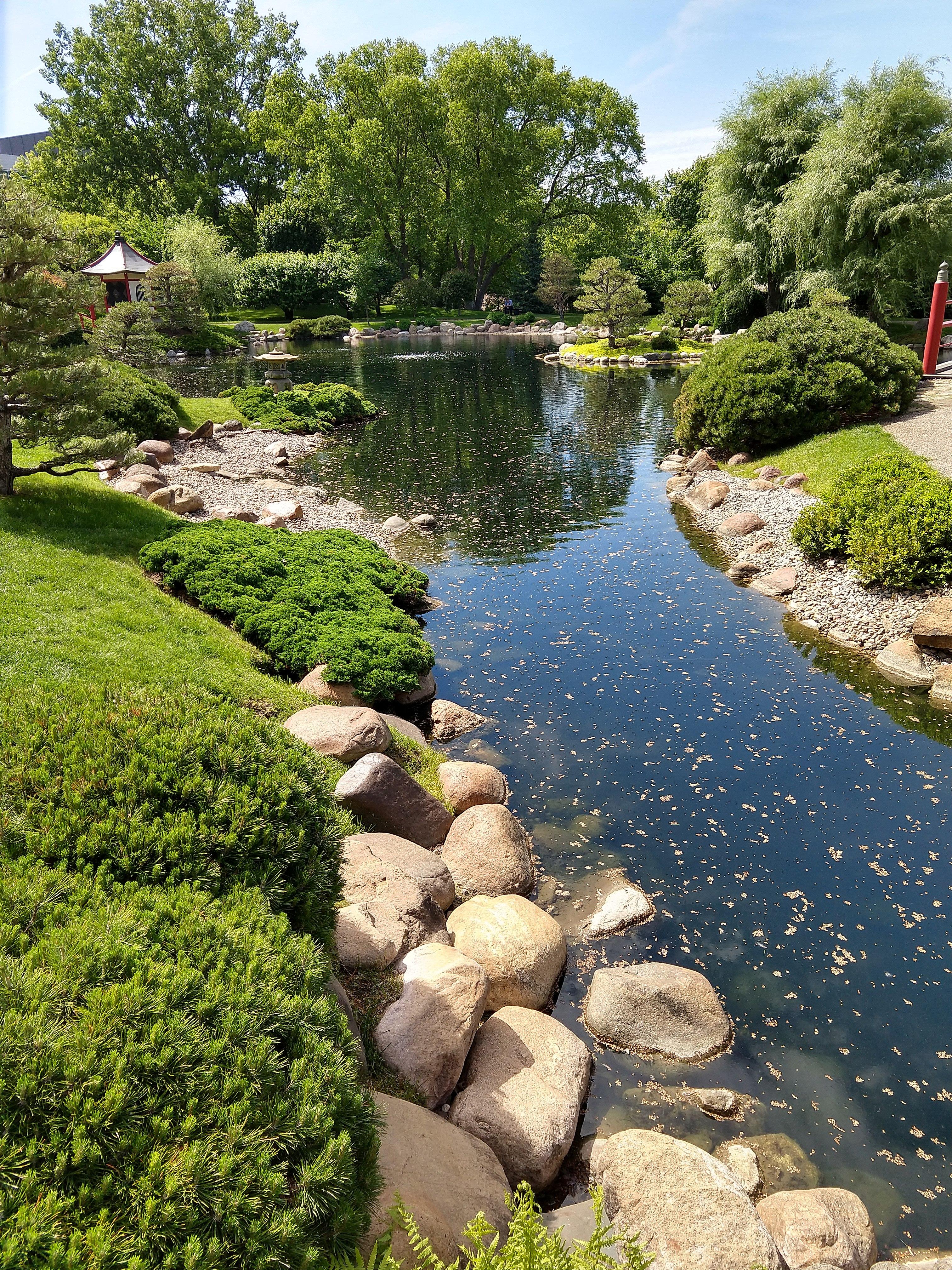 File:Normandale Community College 07 - Japanese garden.jpg