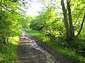 North Mymms Park - geograph.org.uk - 174709.jpg