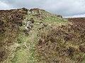 Not the top of Foel Fenlli - geograph.org.uk - 1247968.jpg