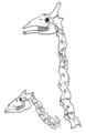 Okapi Giraffe Neck.png