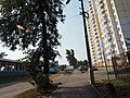 Oktyabrsky, Moscow Oblast, Russia, 140060 - panoramio (160).jpg
