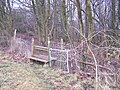 Old Stile and New Stile near Hanginghill Wood - geograph.org.uk - 1160545.jpg