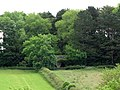 Old lime kiln - geograph.org.uk - 474351.jpg