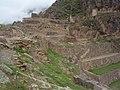 Ollantaytambo, Peru - panoramio (1).jpg