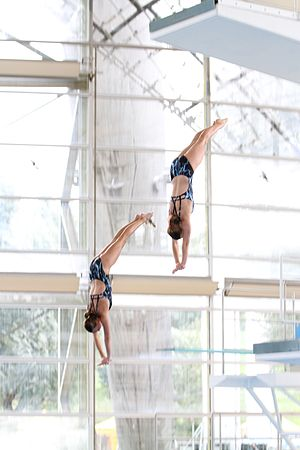 High diving - Synchronized high diving