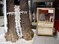 Omikuji tree (124087014).jpg