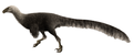 Ornitholestes reconstruction.png