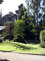 Orto botanico di Napoli 122.jpg