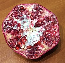 Nasiona Granat właściwy (Punica granatum)