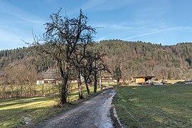 Pörtschach Winklern Brockweg Birnbaumallee 09012020 7947.jpg