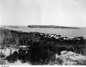 South Island (South Australia) - South Island as viewed from the nearby coastline circa 1912 (State Library of South Australia  PRG 280/1/3/237)