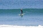 Paddle surfing 01 2007.jpg