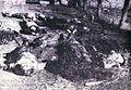 Padli borci 2. čete Kozjanskega bataljona pred pokopoliščem v Podsredi..jpg