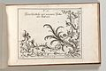 Page from Album of Ornament Prints from the Fund of Martin Engelbrecht MET DP703619.jpg
