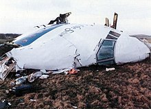 Part of the aircraft nose lying on its side on grassy land