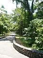 Parque La Llovizna1.JPG