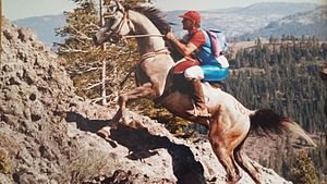 Tevis Cup - The iconic Cougar Rock portion of the trail; 1991 Tevis Cup