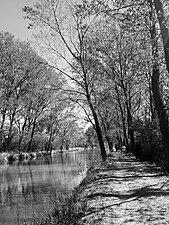 Paseo Canal Norte - Herrera del Pisuerga.jpg