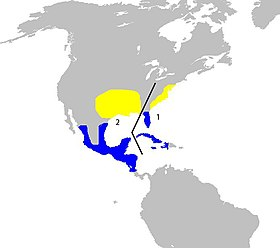 Map showing breeding and winter range of P. ciris