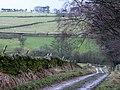 Pastures near Shieldburn Hall - geograph.org.uk - 629167.jpg